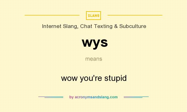What does wys mean? It stands for wow you`re stupid