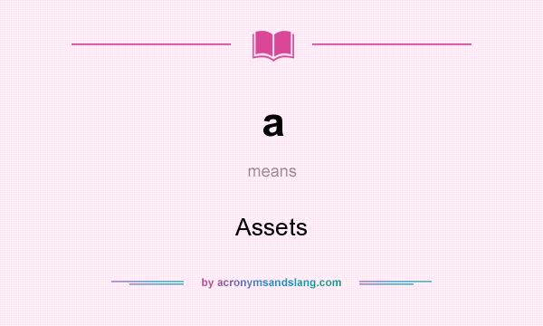 What does a mean? It stands for Assets