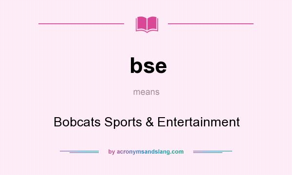 What does bse mean? It stands for Bobcats Sports & Entertainment
