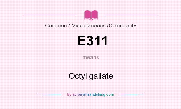 What does E311 mean? It stands for Octyl gallate