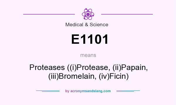 What does E1101 mean? It stands for Proteases ((i)Protease, (ii)Papain, (iii)Bromelain, (iv)Ficin)