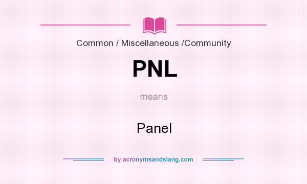 What does PNL mean? It stands for Panel