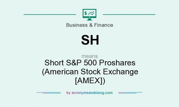 What does SH mean? It stands for Short S&P 500 Proshares (American Stock Exchange [AMEX])