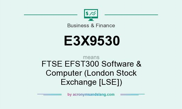 What does E3X9530 mean? It stands for FTSE EFST300 Software & Computer (London Stock Exchange [LSE])