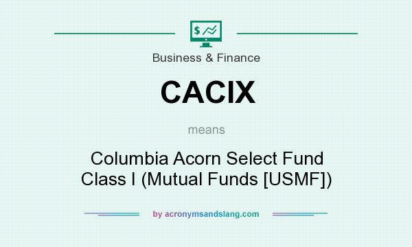 What does CACIX mean? It stands for Columbia Acorn Select Fund Class I (Mutual Funds [USMF])