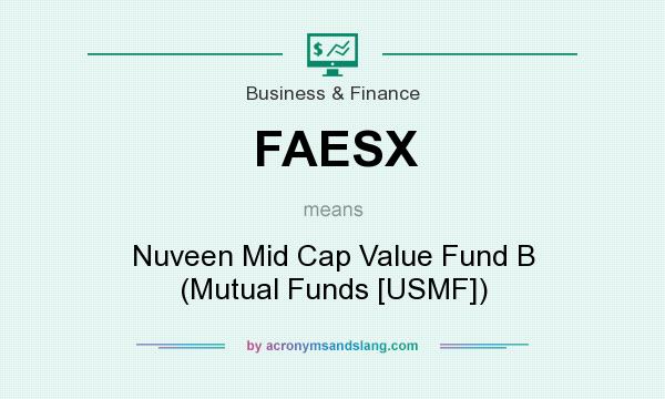 What does FAESX mean? It stands for Nuveen Mid Cap Value Fund B (Mutual Funds [USMF])