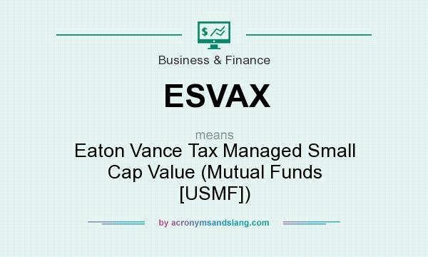 What does ESVAX mean? It stands for Eaton Vance Tax Managed Small Cap Value (Mutual Funds [USMF])