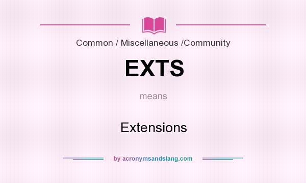 What does EXTS mean? It stands for Extensions