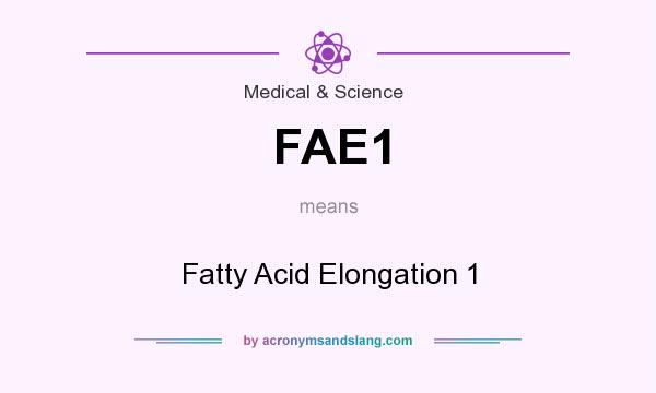 What does FAE1 mean? It stands for Fatty Acid Elongation 1