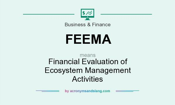 What does FEEMA mean? It stands for Financial Evaluation of Ecosystem Management Activities