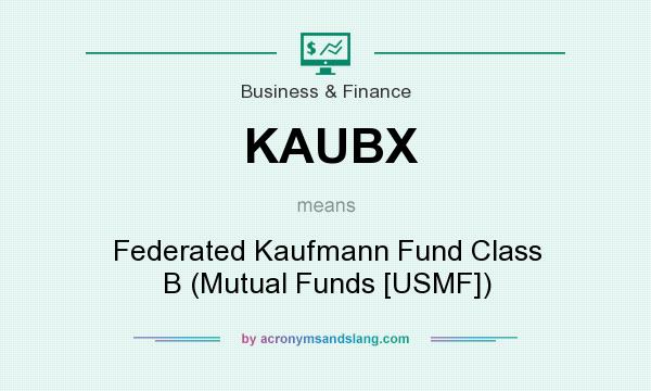 What does KAUBX mean? It stands for Federated Kaufmann Fund Class B (Mutual Funds [USMF])