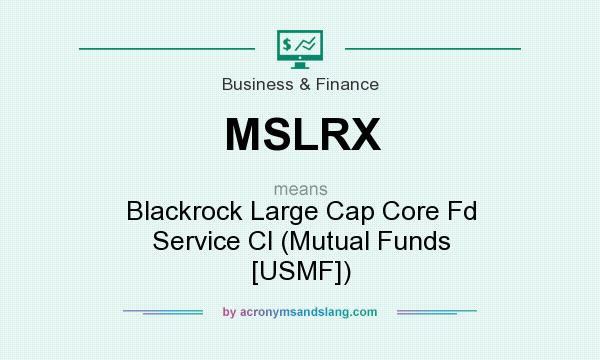 What does MSLRX mean? It stands for Blackrock Large Cap Core Fd Service Cl (Mutual Funds [USMF])