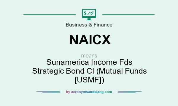 What does NAICX mean? It stands for Sunamerica Income Fds Strategic Bond Cl (Mutual Funds [USMF])
