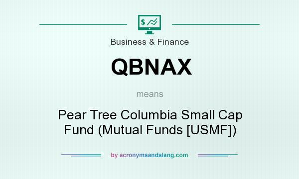 What does QBNAX mean? It stands for Pear Tree Columbia Small Cap Fund (Mutual Funds [USMF])