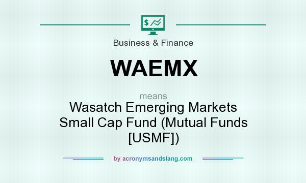 What does WAEMX mean? It stands for Wasatch Emerging Markets Small Cap Fund (Mutual Funds [USMF])