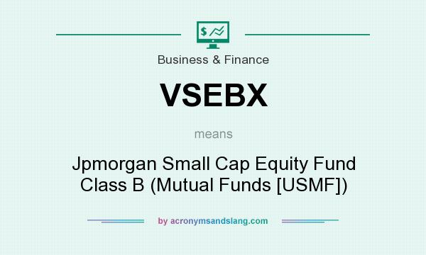What does VSEBX mean? It stands for Jpmorgan Small Cap Equity Fund Class B (Mutual Funds [USMF])