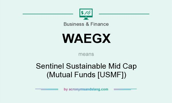 What does WAEGX mean? It stands for Sentinel Sustainable Mid Cap (Mutual Funds [USMF])