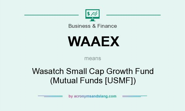 What does WAAEX mean? It stands for Wasatch Small Cap Growth Fund (Mutual Funds [USMF])