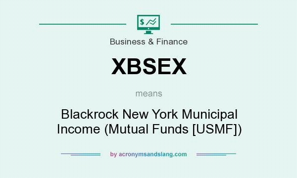 What does XBSEX mean? It stands for Blackrock New York Municipal Income (Mutual Funds [USMF])