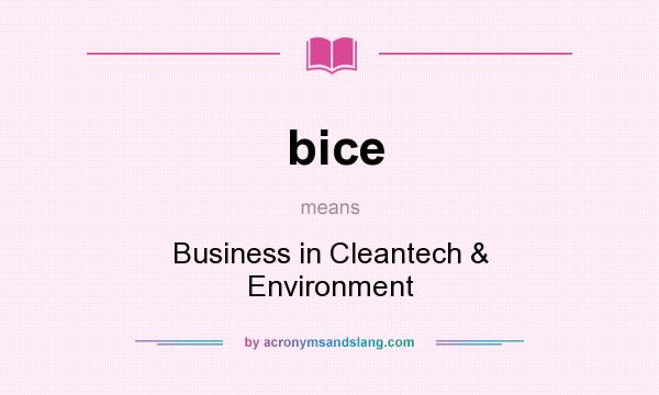 What does bice mean? It stands for Business in Cleantech & Environment
