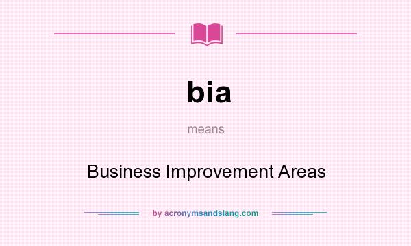 What does bia mean? It stands for Business Improvement Areas