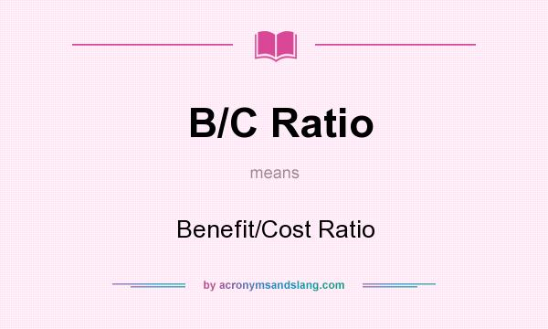 What does B/C Ratio mean? It stands for Benefit/Cost Ratio