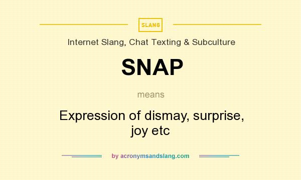 What does snap stand for slang