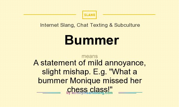 What does Bummer mean? It stands for A statement of mild annoyance, slight mishap. E.g. What a bummer Monique missed her chess class!