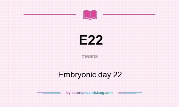 What does E22 mean? It stands for Embryonic day 22