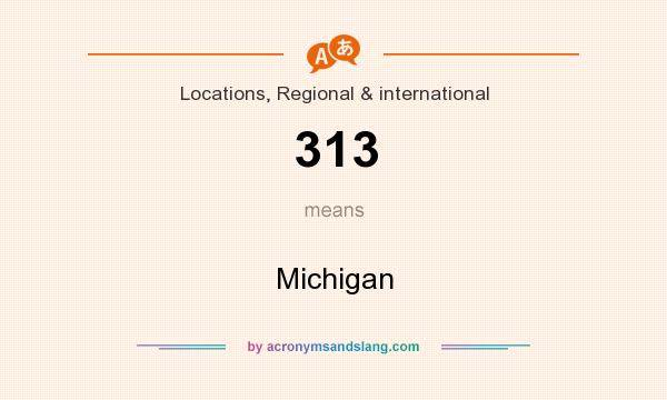 What does 313 mean? It stands for Michigan
