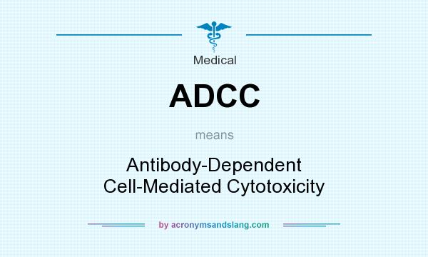 What does ADCC mean? It stands for Antibody-Dependent Cell-Mediated Cytotoxicity