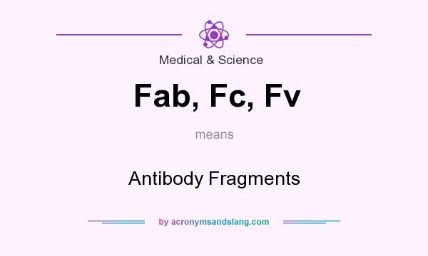 What does Fab, Fc, Fv mean? It stands for Antibody Fragments