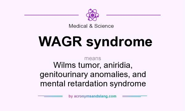 What does WAGR syndrome mean? It stands for Wilms tumor, aniridia, genitourinary anomalies, and mental retardation syndrome