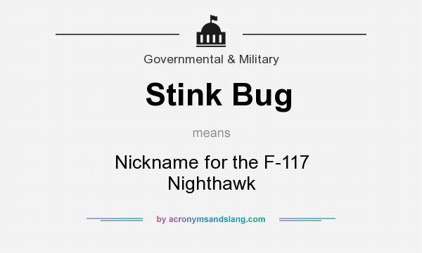 What does Stink Bug mean? It stands for Nickname for the F-117 Nighthawk