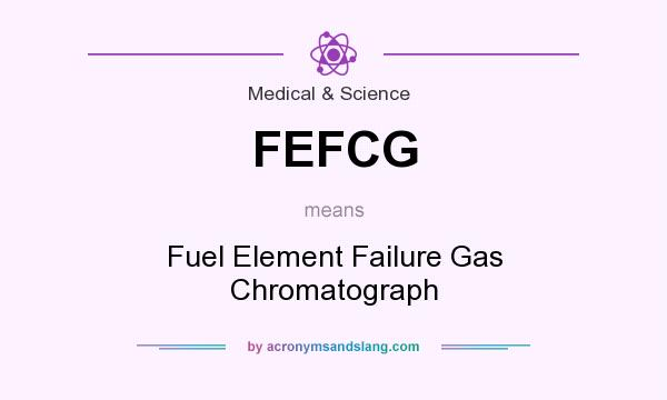 What does FEFCG mean? It stands for Fuel Element Failure Gas Chromatograph