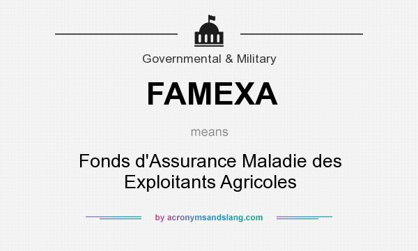 What does FAMEXA mean? It stands for Fonds d`Assurance Maladie des Exploitants Agricoles