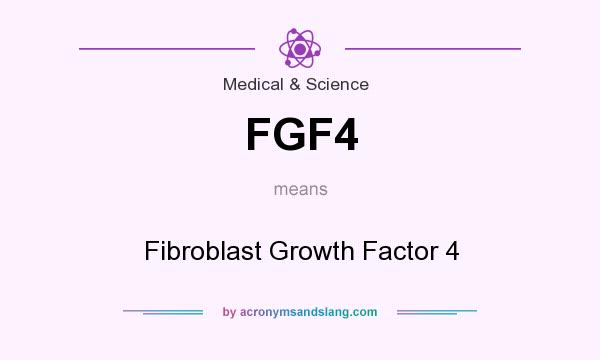 What does FGF4 mean? It stands for Fibroblast Growth Factor 4