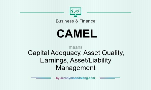 What does CAMEL mean? It stands for Capital Adequacy, Asset Quality, Earnings, Asset/Liability Management