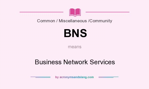 What does BNS mean? It stands for Business Network Services