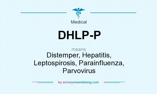 What does DHLP-P mean? It stands for Distemper, Hepatitis, Leptospirosis, Parainfluenza, Parvovirus