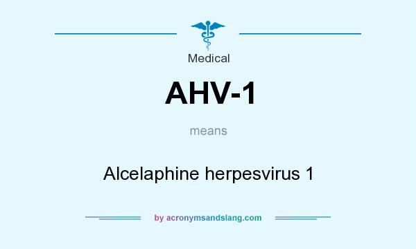 What does AHV-1 mean? It stands for Alcelaphine herpesvirus 1