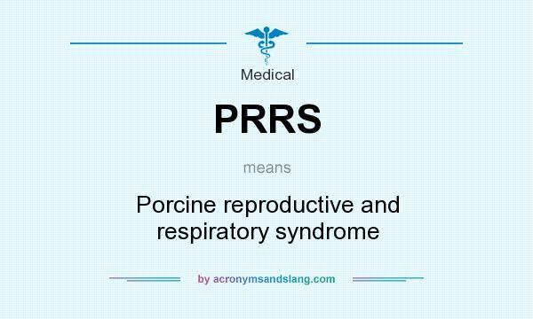 What does PRRS mean? It stands for Porcine reproductive and respiratory syndrome