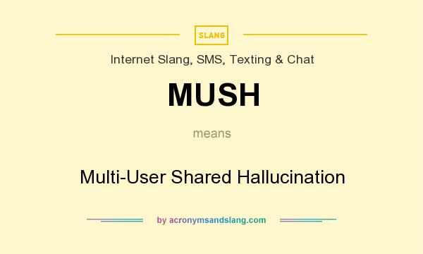 What does MUSH mean? It stands for Multi-User Shared Hallucination