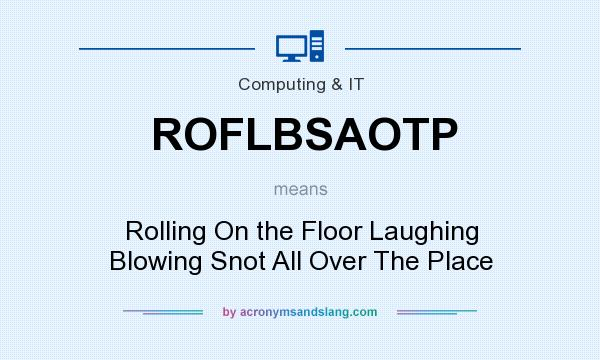 What does ROFLBSAOTP mean? It stands for Rolling On the Floor Laughing Blowing Snot All Over The Place