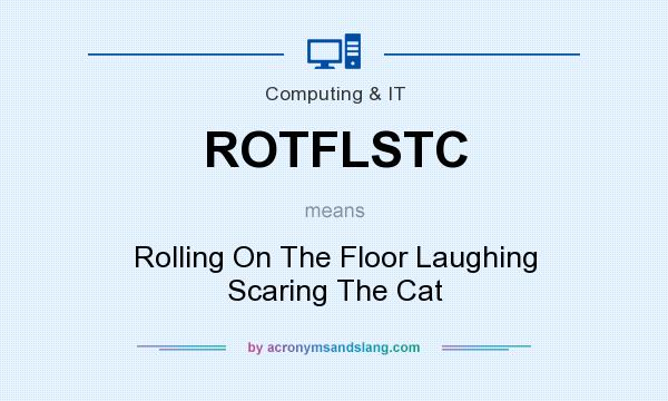What does ROTFLSTC mean? It stands for Rolling On The Floor Laughing Scaring The Cat
