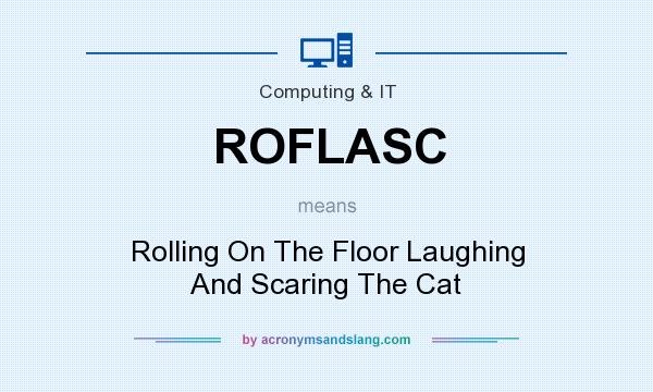 What does ROFLASC mean? It stands for Rolling On The Floor Laughing And Scaring The Cat