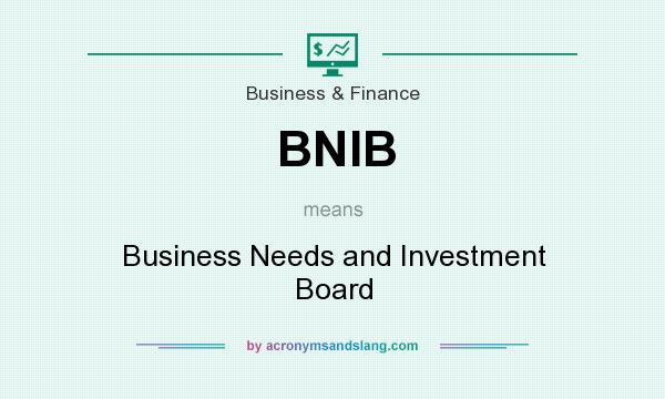 What does BNIB mean? It stands for Business Needs and Investment Board