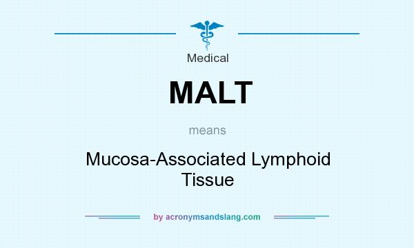 What does MALT mean? It stands for Mucosa-Associated Lymphoid Tissue
