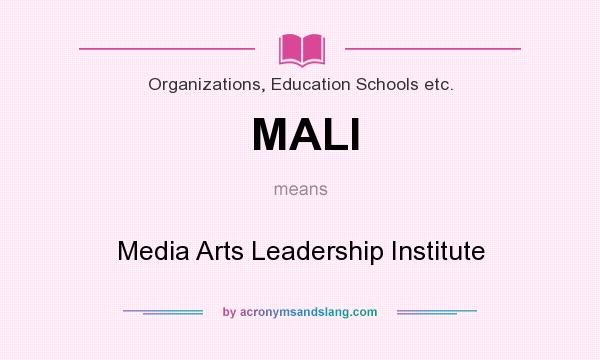 What does MALI mean? It stands for Media Arts Leadership Institute