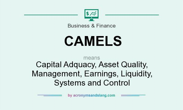 What does CAMELS mean? It stands for Capital Adquacy, Asset Quality, Management, Earnings, Liquidity, Systems and Control